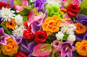 Свежие цветы