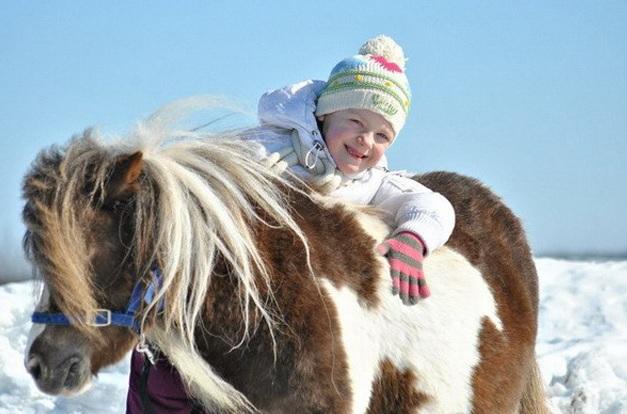 В гости к маленьким лошадкам